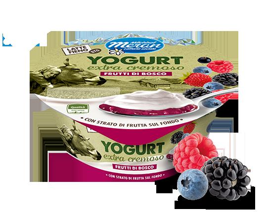 Yogurt intero da latte fieno stg con frutti di bosco